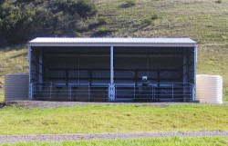 Horse Shelters   Wide Span Sheds