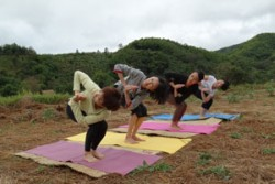 Yoga and Meditation at Tigerland Paddy and Bamboo Forest, Tigerland Rice Farm, Chiang Rai, Thail ...