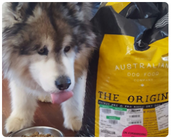 Aussie Dog Food