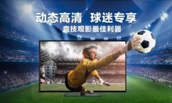 70 inch 3D TV